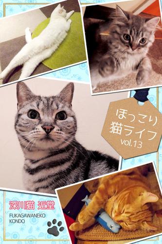 ほっこり猫ライフ vol.13 / BlueLabel