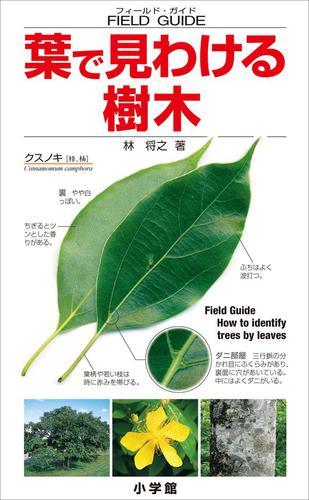 葉で見わける樹木 フィールド・ガイド / 林将之