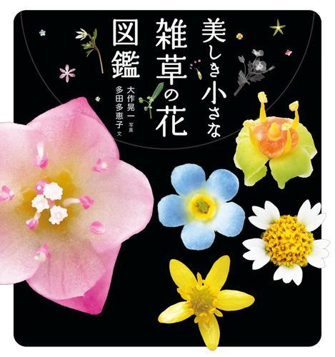 美しき小さな雑草の花図鑑 / 大作 晃一