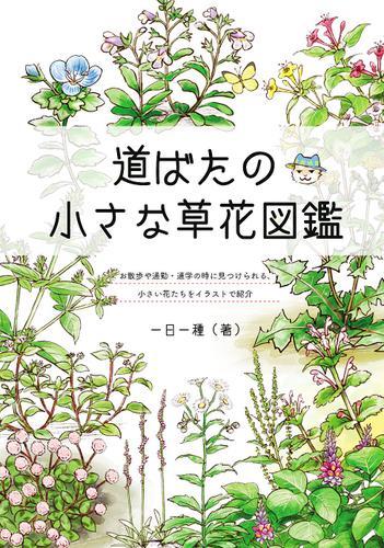 道ばたの小さな草花図鑑 / 一日一種