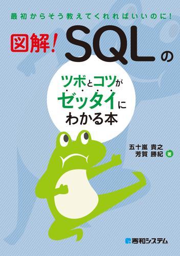 図解! SQLのツボとコツがゼッタイにわかる本 / 五十嵐貴之