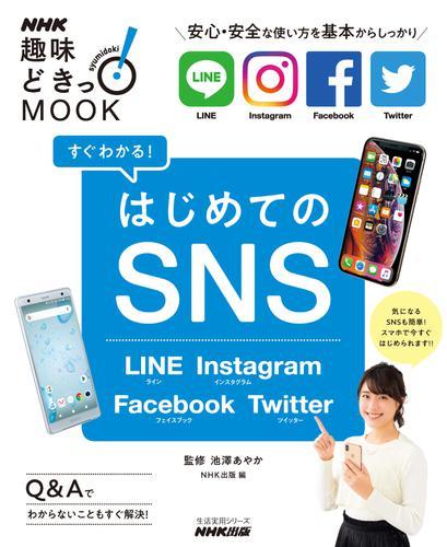 すぐわかる!はじめてのSNS LINE Instagram Facebook Twitter / 池澤あやか