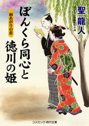 ぼんくら同心と徳川の姫 雨あがりの恋 / 聖龍人
