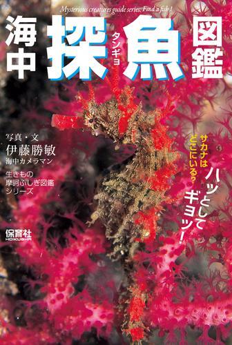 海中探魚図鑑 / 伊藤勝敏