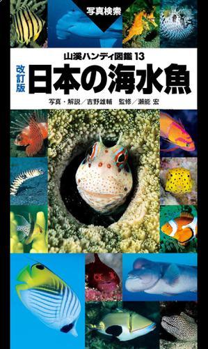 山溪ハンディ図鑑 改訂版 日本の海水魚 / 吉野 雄輔