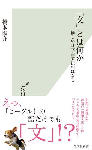 「文」とは何か~愉しい日本語文法のはなし~ / 橋本陽介