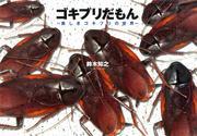ゴキブリだもん~美しきゴキブリの世界~ / 鈴木知之