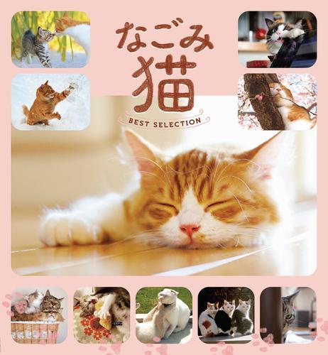 なごみ猫 BEST SELECTION / 山と溪谷社=編