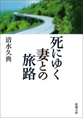 死にゆく妻との旅路 / 清水久典