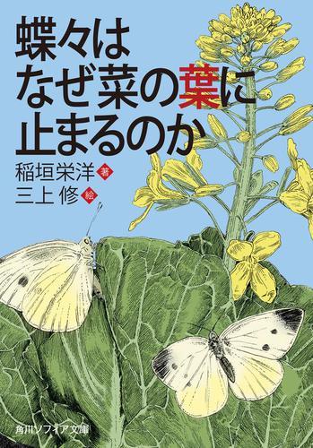 蝶々はなぜ菜の葉に止まるのか / 稲垣栄洋