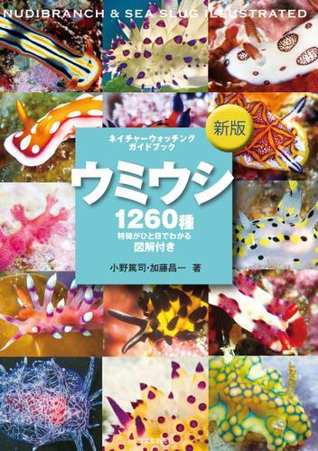 新版 ウミウシ / 小野篤司