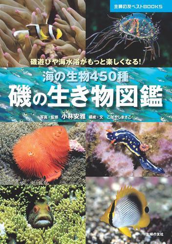 磯の生き物図鑑 / 小林安雅