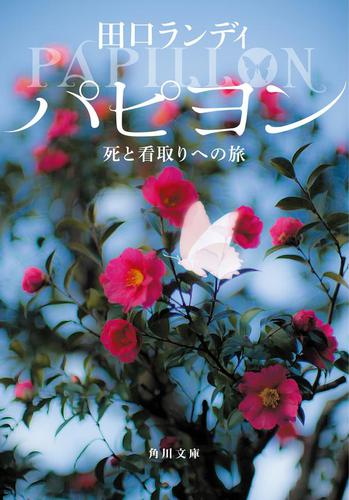 パピヨン 死と看取りへの旅 / 田口ランディ