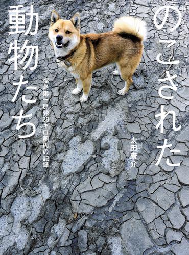 のこされた動物たち――福島第一原発20キロ圏内の記録 / 太田康介