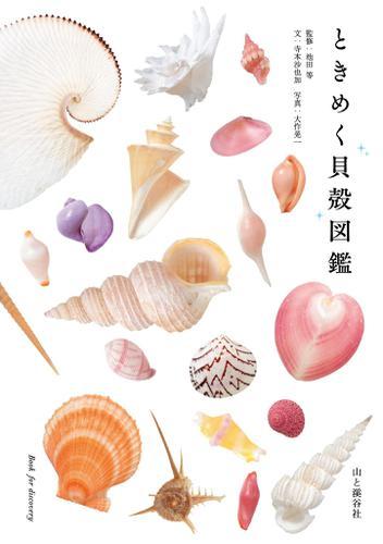 ときめく貝殻図鑑 / 大作 晃一
