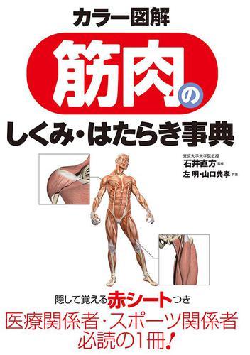 カラー図解 筋肉のしくみ・はたらき事典 / 石井直方