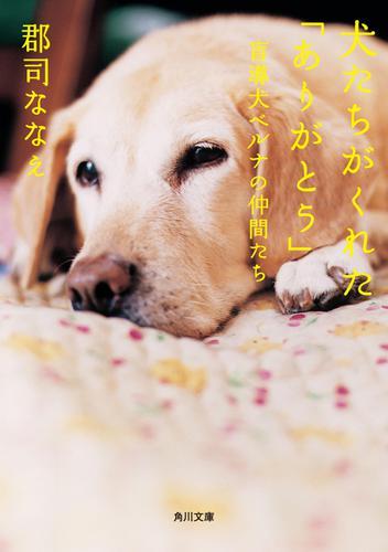 犬たちがくれた「ありがとう」 盲導犬ベルナの仲間たち / 郡司ななえ
