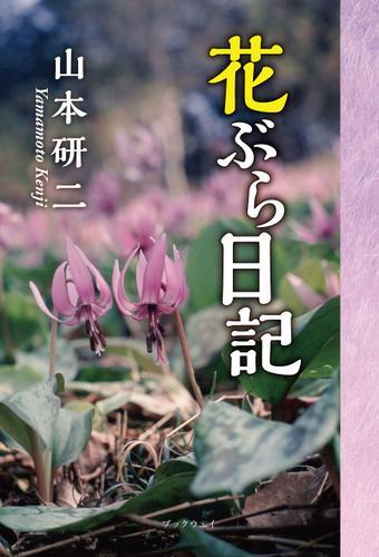 花ぶら日記 / 山本研二