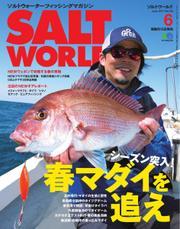SALT WORLD(ソルトワールド) (2017年6月号)