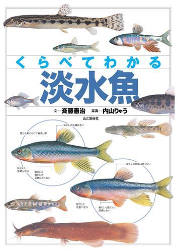 くらべてわかる 淡水魚 / 斉藤 憲治