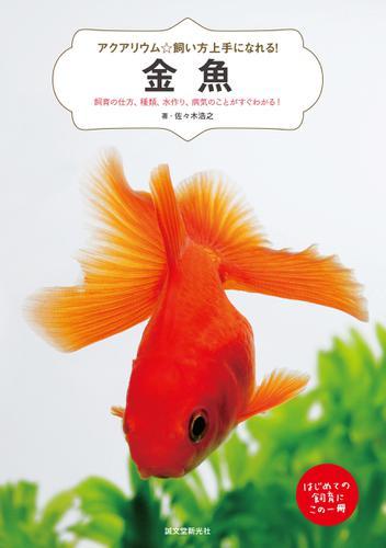 金魚 / 佐々木浩之