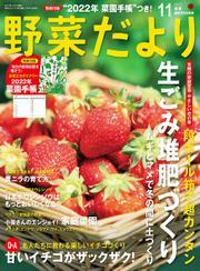 野菜だより (2021年11月号) / ブティック社編集部
