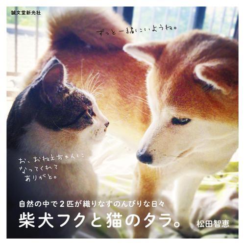 柴犬フクと猫のタラ。 / 松田智恵
