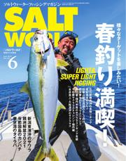 SALT WORLD(ソルトワールド) (2021年6月号) / マイナビ出版