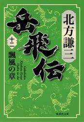 岳飛伝 十二 瓢風の章