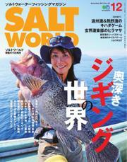 SALT WORLD(ソルトワールド) (2017年12月号)
