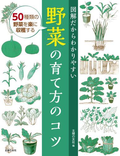 図解だからわかりやすい野菜の育て方のコツ / 主婦の友社
