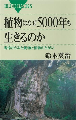 植物はなぜ5000年も生きるのか 寿命からみた動物と植物のちがい / 鈴木英治