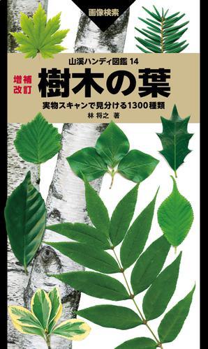 山溪ハンディ図鑑 14 増補改訂 樹木の葉 実物スキャンで見分ける1300種類 / 林 将之