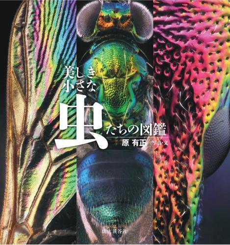 美しき小さな虫たちの図鑑 / 原 有正