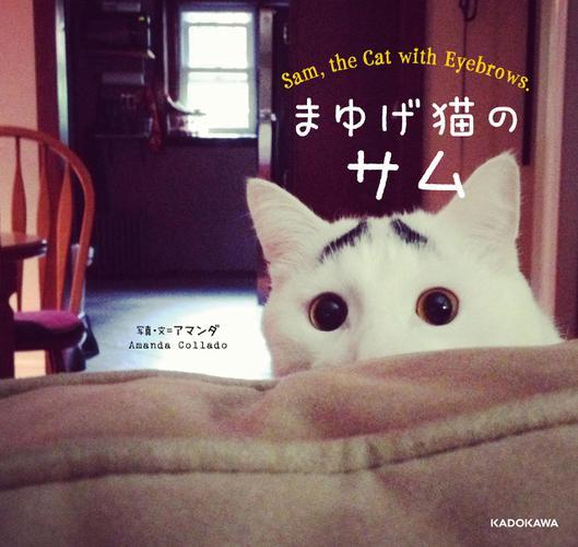 まゆげ猫のサム / アマンダ