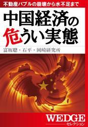 中国経済の危うい実態(WEDGEセレクション No.22) / 富坂聰