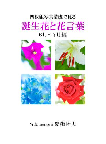 四枚組写真構成で見る誕生花と花言葉6~7月編 / アイロゴス