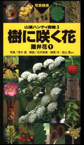 ヤマケイハンディ図鑑3 樹に咲く花 離弁花(1) / 茂木 透