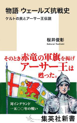 物語 ウェールズ抗戦史 ケルトの民とアーサー王伝説 / 桜井俊彰