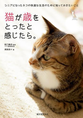 猫が歳をとったと感じたら。 / 高梨奈々