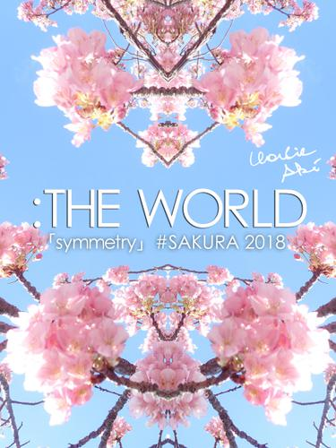 :THE WORLD - 「symmetry」#SAKURA 2018 / チャーリー・アキ