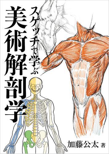 スケッチで学ぶ美術解剖学 / 加藤公太