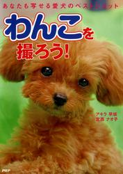 わんこを撮ろう! あなたも写せる愛犬のベストショット / アキラ早坂