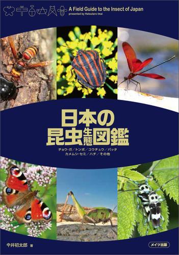 日本の昆虫生態図鑑 / 今井初太郎