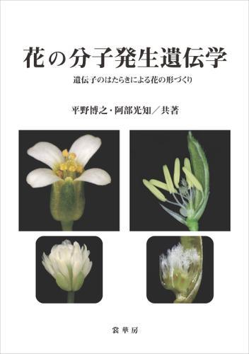 花の分子発生遺伝学 遺伝子のはたらきによる花の形づくり / 平野博之