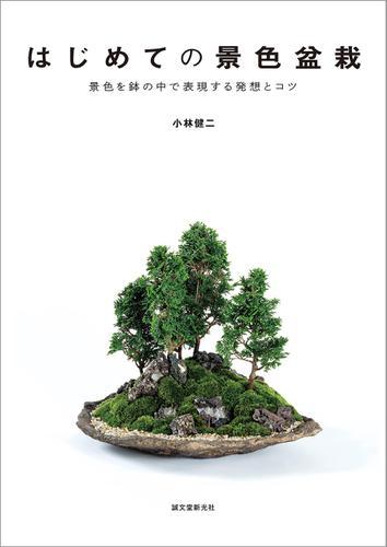 はじめての景色盆栽 / 小林健二