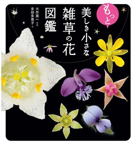 もっと美しき小さな雑草の花図鑑 / 大作 晃一