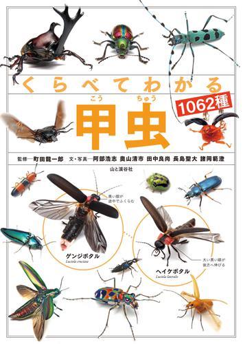 くらべてわかる甲虫1062種 / 町田 龍一郎