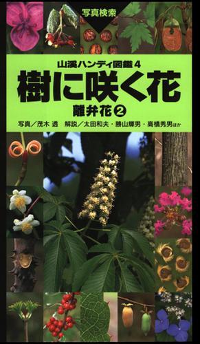 ヤマケイハンディ図鑑4 樹に咲く花 離弁花(2) / 茂木 透