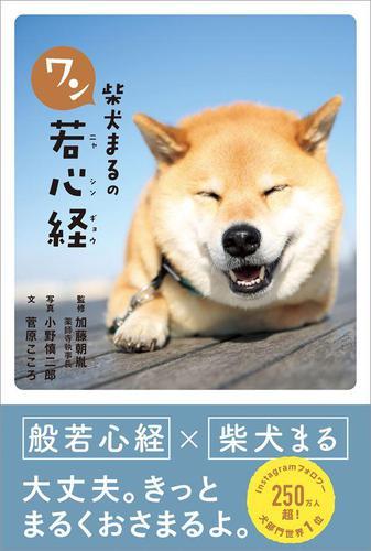 柴犬まるのワン若心経 / 小野慎二郎